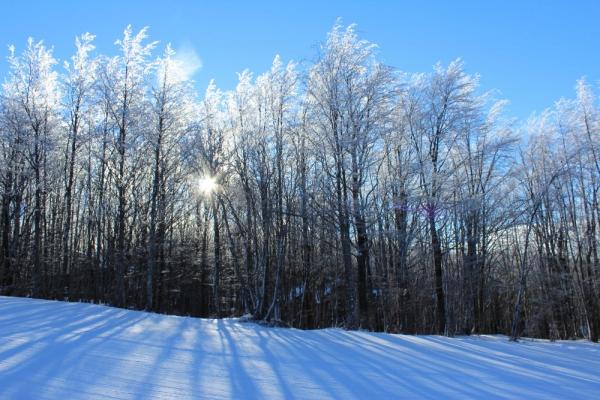 doganaccia_inverno